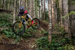 دوچرخه-ریس-والاس-2