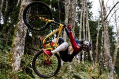 دوچرخه-ریس-والاس-4
