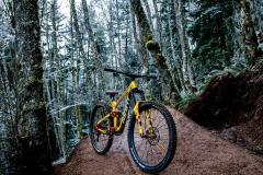 دوچرخه-ریس-والاس-9