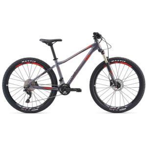 80040113-دوچرخه لیو مدل Tempt 1