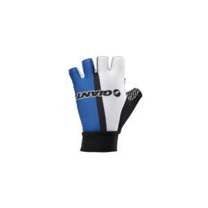 BRG830000055-دستکش حرفه ای تیم جاینت مدل Team Glove Giant Short