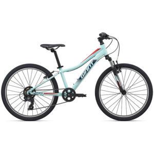 دوچرخه جاینت مدل XtC Jr 24 2020