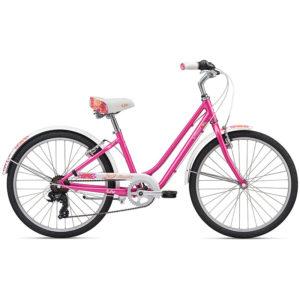 دوچرخه لیو مدل Flourish-24 2020