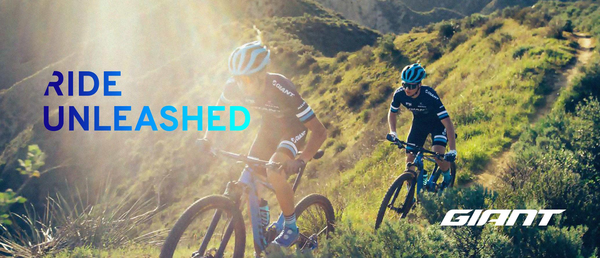دوچرخه مردانه-جاینت