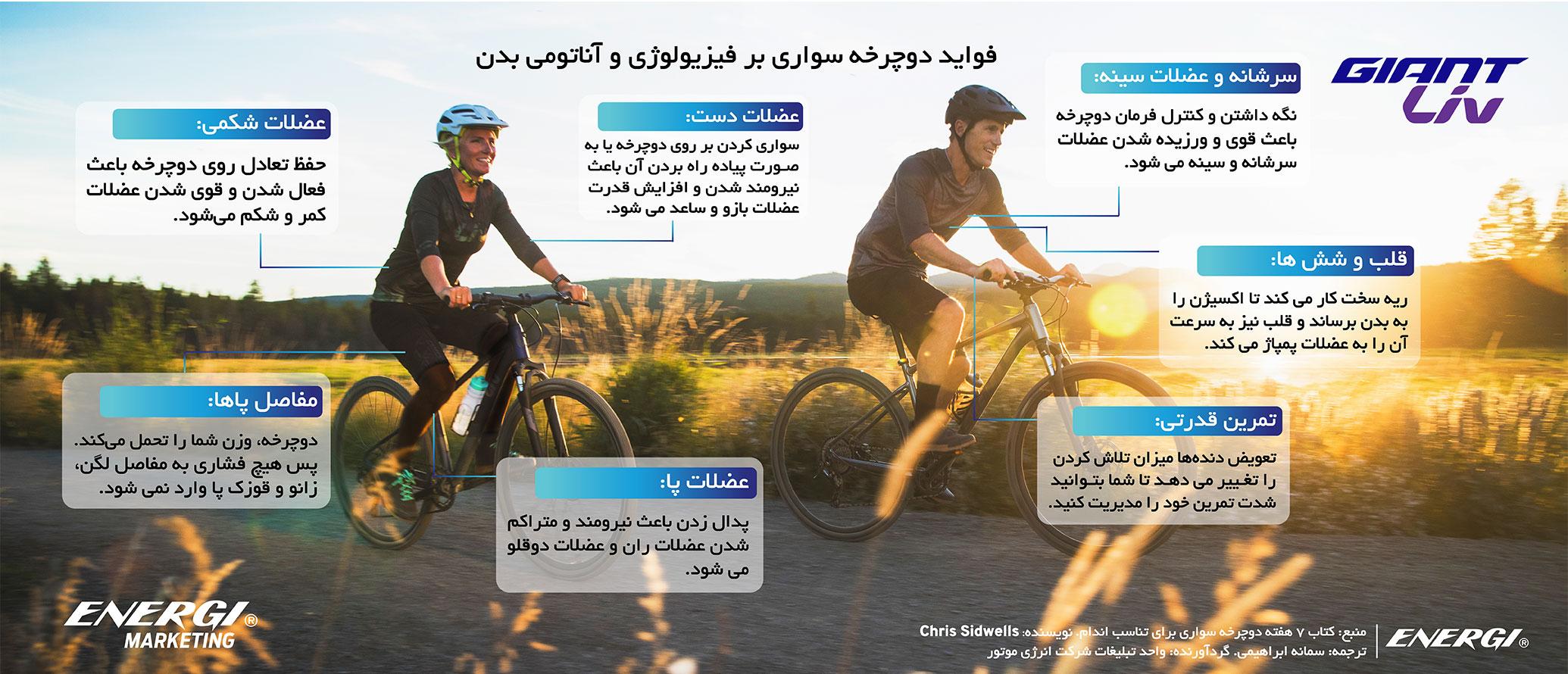 فواید دوچرخه سواری بر فیزیولوژی و آناتومی بدن